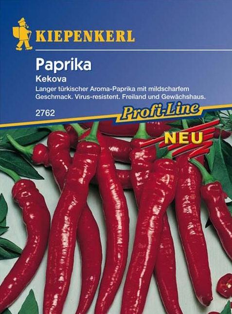 peperoni pflanzen im topf